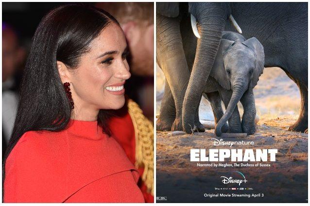 Meghan Markle ha dato la voce narrante al film Elephant, cri