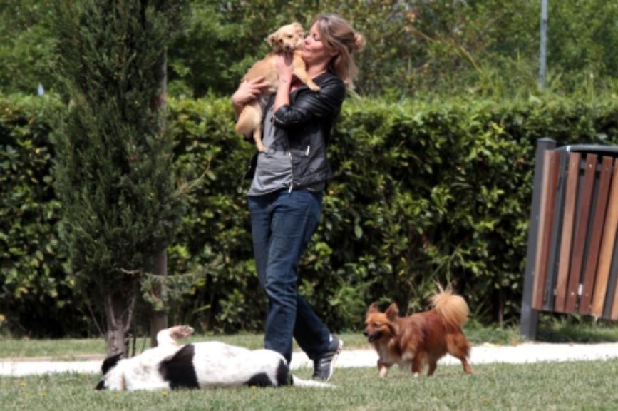 Flavia Vento quanti cani ha? Anni, Sorella e Lavoro