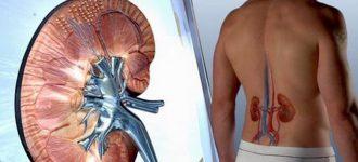 Fate attenzione a questi sintomi, i vostri reni potrebbero non funzionare più correttamente